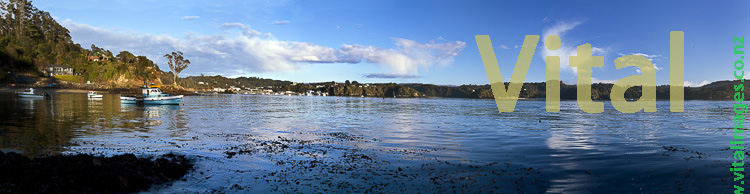 Boats at Anchor Rakiura Stewart Island from Lonnekers Beach Oban & Halfmoon Bay Township in background