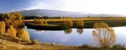 Vineyards_in_Central_Otago_Photos_Images_of_Central_Otago_Vineyards_Pinot_Noir_Vines_Grapes_Wine_Winery