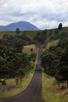 Rural_Landscape_and_Road_near_Singleton_Hunter_Valley_NSW_New_South_Wales_Australia