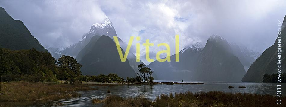 Mitre Peak and Milford Sound  Classic New Zealand Landscape Photographs Images Nature Natural Pristine Images Nature Photography Fresh New Painterly Interpretation