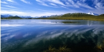 thin_sheet_of_ice_on_the_Maori_Lakes_near_Lake_Herron_in_the_Hakatere_conservation_park_south_canterbury_New_Zealand