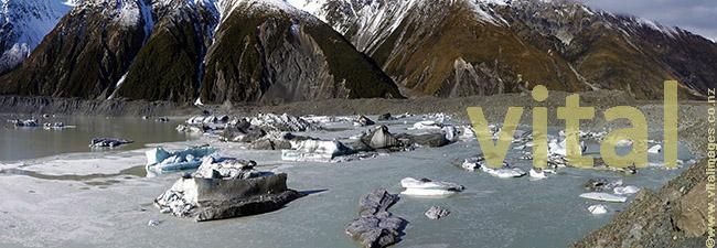 Icebergs calved off terminal moraine off Tasman glacier floating in Tasman lake Aoraki Mt Cook National Park July2009