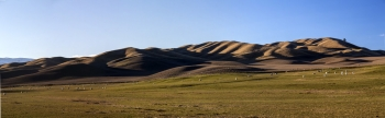 NZ_Rural_Pastoral_landscape___Near_Tiger_Hill_on_the_Road_to_Omakau