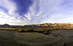 Poplar_grove_on_the_Clutha_river_near_Stevensons_Road_Wanaka_Airport_Looking_towards_Mt_Grand_Grandview