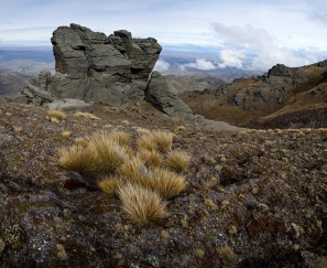 Snow_Tussock_amp;_Tors_Photo_Dunstan_Range_Central_Otago
