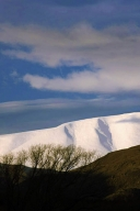 abstract_cloud_willowtrees_and_sky_and_snow_clad_hills_and_gullies